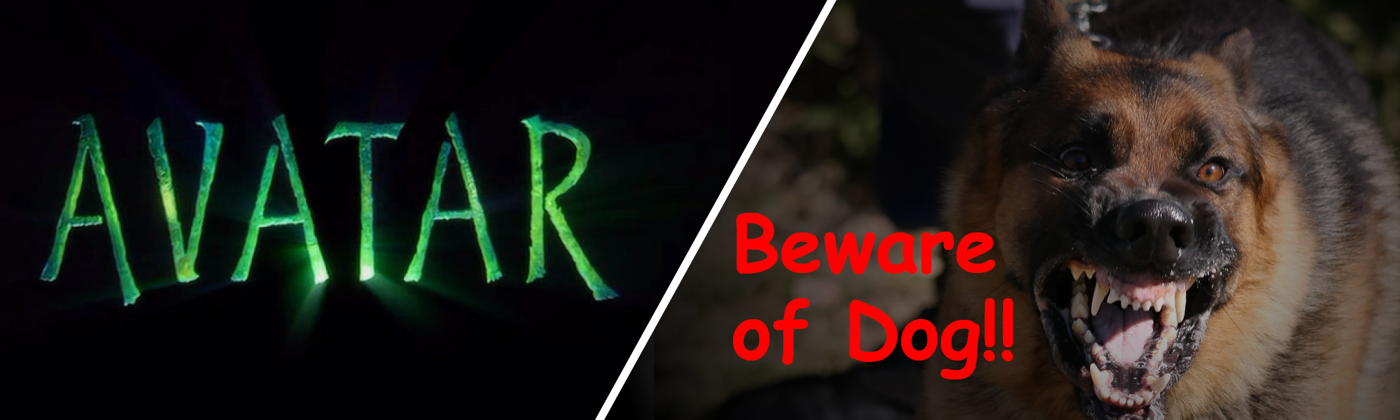 avatar in papyrus and beware in comic sans